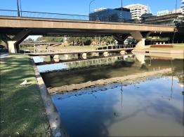 12 Parra river 2