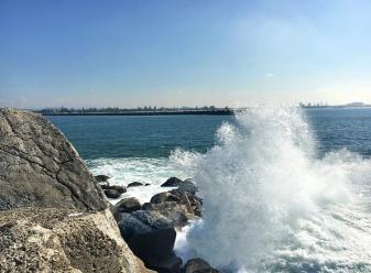 14 waves