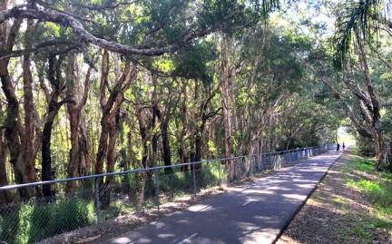 6 bike path