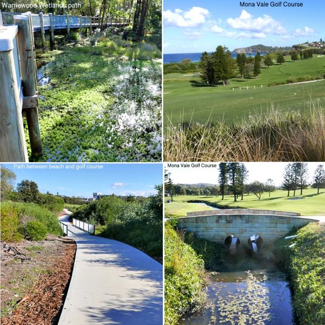 5 Wetlands & MVGC