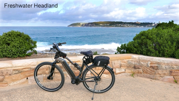 8 Freshie Headland