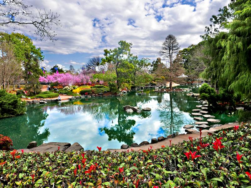 6a gardenscape
