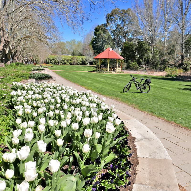 9 Moss Vale Gardens