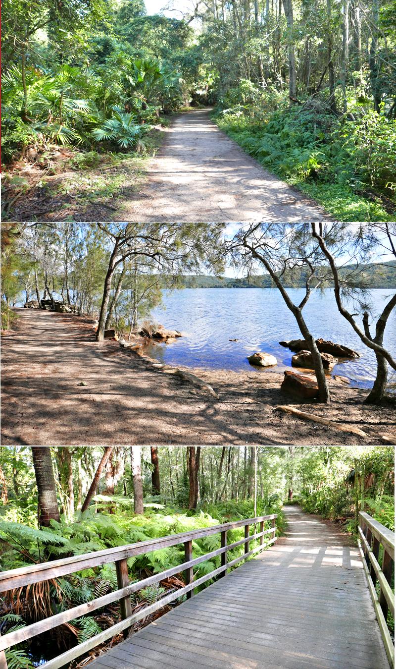 https://www.northernbeaches.nsw.gov.au/sites/default/files/warriewood-wetlands-pom.pdf